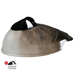 Storm Front™2 Canada Goose Shell - Flocked Head Rester 12-Pack storm, storm front, front, storm front 2 decoys, stormfront 2 decoys, stormfront 2 decoy, storm front 2 decoy, uvision, u vision, u-vision, uv, goose decoy, goose decoys, canadian goose, canada goose, waterfowl, geese, sleeper, rester, sleeping, resting, flocked canada goose shell, shell, hunting, bird hunting, hunting gear for birds, hunting birds, fathers day, gift for him, Christmas gift for him,