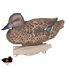 Storm Front™2 Classic Green-winged Teal - 6-Pack - 8015SUV
