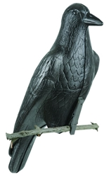 Foam Crow foam, foam crow, crow decoy, crow decoys