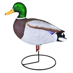 Stormfront™ Full Body Mallard-6 Pack storm, storm front, front, storm front decoys, stormfront decoys, stormfront decoy, storm front decoy, uvision, u vision, u-vision, uv, duck, ducks, waterfowl, duck decoy, duck decoys, decoy, decoys, mallard, classic mallard, hunting, duck hunting, duck hunting decoy,  Mallard duck decoy, fathers day gift, gift for him, Christmas gift for him, realistic decoy, realistic hunting decoy, field, full-body, full body, full, heads, adjustable heads, feeding, active, feeder, drake, hen, stand, motion, flambeau, outdoors
