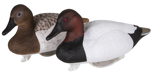 Gunning Series™ Foam Filled Canvasback - 6 Pack gunning series, duck decoy, decoy, waterfowl, duck