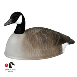 Storm Front™2 Canada Goose Shell - 12-Pack storm, storm front 2, front, storm front 2 decoys, stormfront 2 decoys, stormfront 2 decoy, storm front decoy, uvision, u vision, u-vision, uv, goose decoy, goose decoys, canadian goose, canada goose, waterfowl, geese, canada goose shell, shell, hunting, bird hunting, hunting gear for birds, hunting birds, fathers day, gift for him, Christmas gift for him,