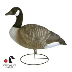Storm Front™2 Full Body Canada Goose - Flocked Head Standard 6-Pack storm, storm front 2, front, storm front decoys, stormfront decoys, stormfront 2 decoy, storm front decoy, uvision, u vision, u-vision, uv, goose decoy, goose decoys, canadian goose, canada goose, waterfowl, geese, full, full body, full boddy canada goose, canadian goose decoy, canadian goose decoys, realistic goose decoy, hunting geese, hunting, hunting birds, bird decoys, hunting bird decoys, gifts for him, fathers day gift, christmas gift for him,
