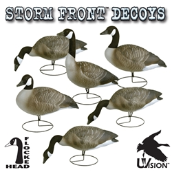Stormfront™ Full Body Canada Goose - Standard 6-Pack storm, storm front, front, storm front decoys, stormfront decoys, stormfront decoy, storm front decoy, uvision, u vision, u-vision, uv, goose decoy, goose decoys, canadian goose, canada goose, waterfowl, geese, full, full body, full boddy canada goose, canadian goose decoy, canadian goose decoys, realistic goose decoy, hunting geese, hunting, hunting birds, bird decoys, hunting bird decoys, gifts for him, fathers day gift, christmas gift for him,