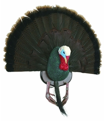 Master Series™ Turkey Mounting Kit turkey hunting, turkey mounting kit, turkey mount, turkey fan, turkey feathers, feathers,kit, master series